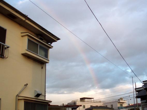 虹20131220⑤