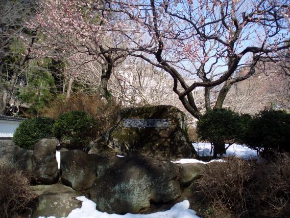 大倉山梅林公園30