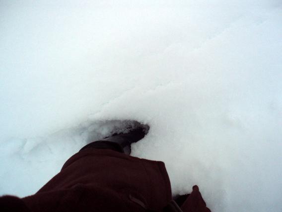 雪2014.02.15