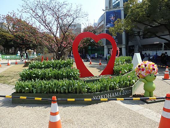 横浜公園山下公園20170320 (6)