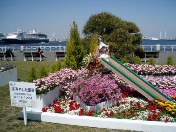 花壇展山下公園20140415