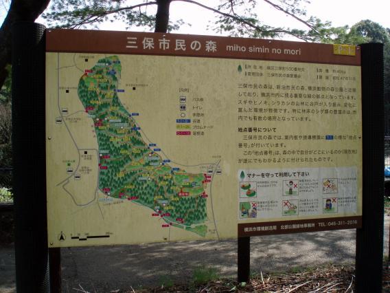 三保市民の森・地図