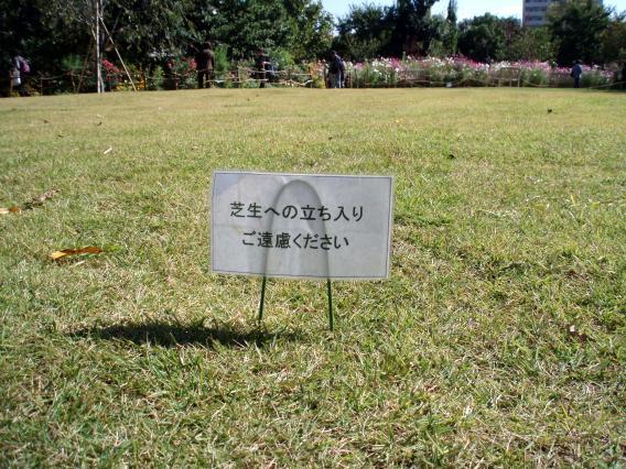 横浜イングリッシュガーデン芝生