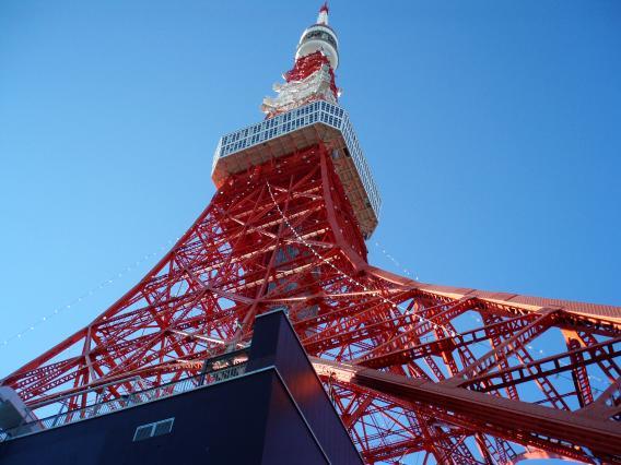 見上げる東京タワー