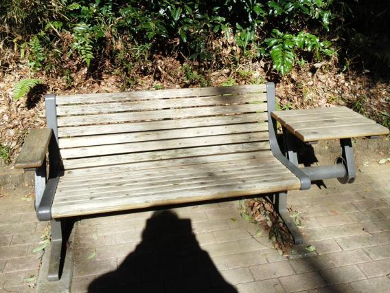 東高根森林公園201501テーブルベンチ (2)