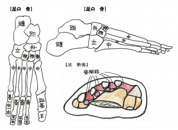 固定ページ用足の絵