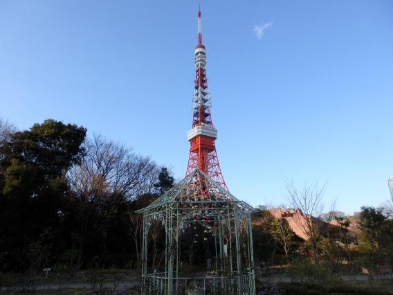 増上寺からの20160103 (8)+1