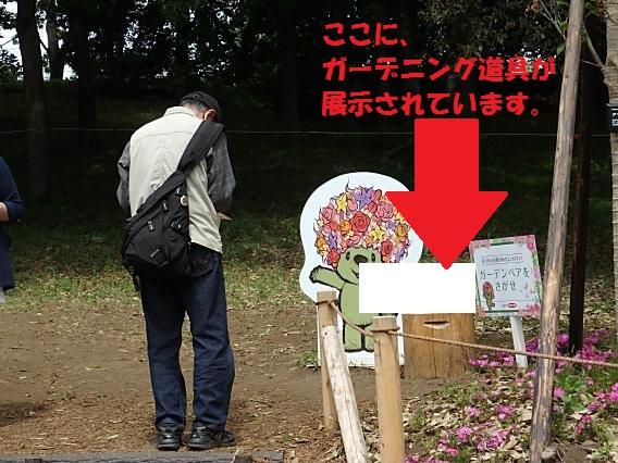 里山ガーデン20170503 (32)
