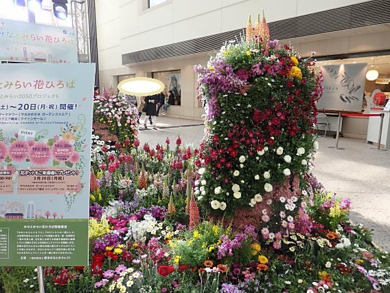 横浜公園山下公園20170320 (45)