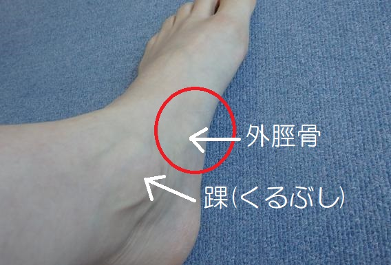 外脛骨 (1)