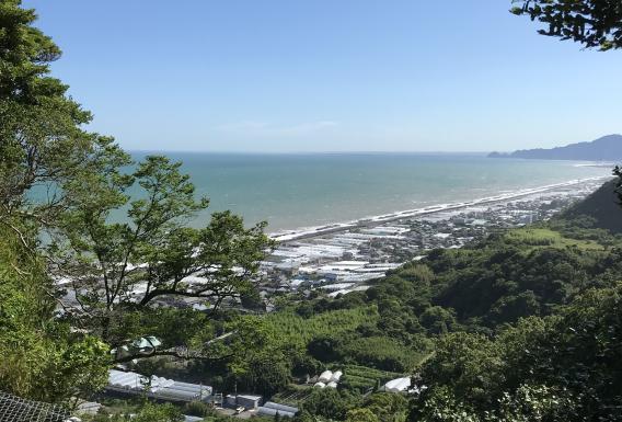 20180612三保の松原 (14)