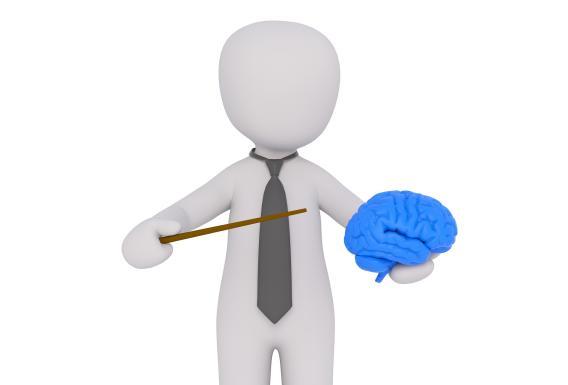 brain0054