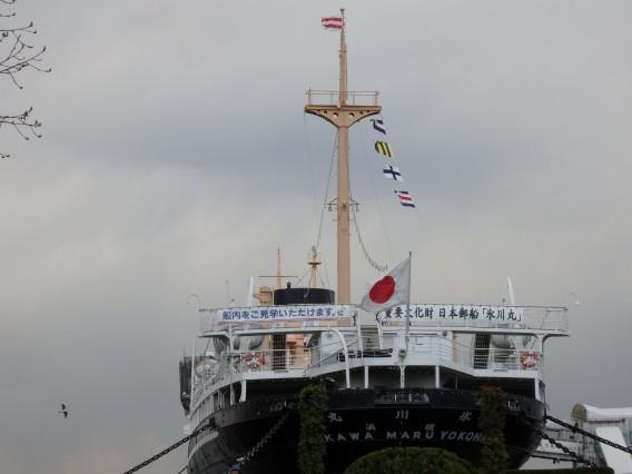 横浜公園チューリップ20190402 (113)